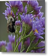Willowwood Bee Metal Print