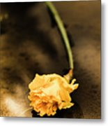 Wilting Puddle Flower Metal Print