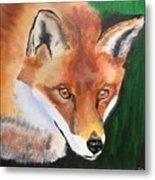 Wily Fox Metal Print