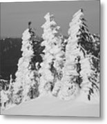 Wind And Snow Metal Print