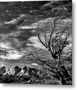 Wind Shaped Tree #2 - Patagonia Metal Print