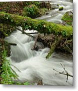 Winding Creek With A Mossy Log Metal Print