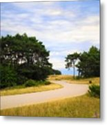Winding Road Into The Unknown Metal Print
