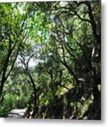 Winding Road Santa Ynez Mountains Metal Print