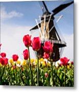 Windmill Island Tulip Gardens Metal Print