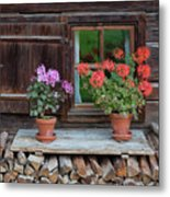 Window And Geraniums Metal Print