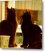 Window Cats Metal Print