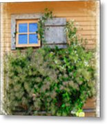 Window Floral In Plymouth Metal Print