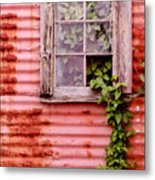 Window Of Ivy Metal Print