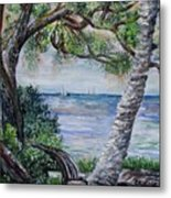 Window On Pine Island Metal Print