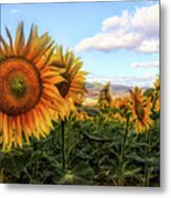 Window To The Sunflower Fields Oil Painting Metal Print