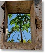 Window Tree Metal Print