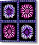 Windowpanes Brimming With  Moonburst Stripes Of Flowers - Scene 5 Metal Print