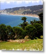 Windswept Over San Francisco Bay Metal Print