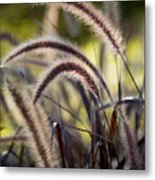Windy Grass Metal Print
