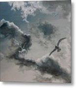 Windy Weather Metal Print