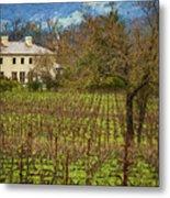 Wine Country California 1 Metal Print