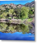 Winery Pond Reflections Metal Print