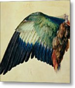 Wing Of A Blue Roller Metal Print