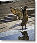 Winged Bird Metal Print