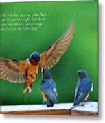 Wings Metal Print by Diane E Berry