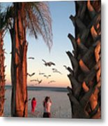Wings Over The Palms Metal Print
