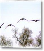 Wingspread Metal Print