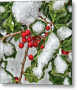 Winter - Ice Coated Holly Metal Print