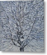 Winter '05 Metal Print by Leah  Tomaino