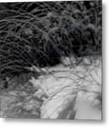 Winter Abstract Black And White Metal Print