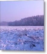 Winter Afternoon Metal Print