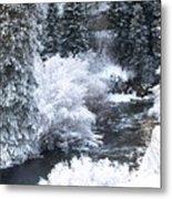 Winter Along The Creek Metal Print