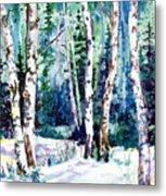 Winter Aspen Metal Print