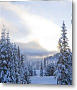 Winter Atmosphere Metal Print