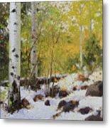 Winter Beauty Sangre De Mountain 2 Metal Print