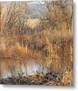 Winter Beaver Dam Charm Co     Metal Print