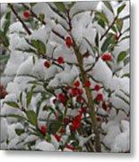 Winter Berries In Watercolor Metal Print