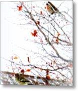 Winter Birds 1 Metal Print