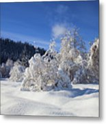 Winter Blanket Metal Print