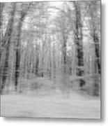 Winter Blast Metal Print