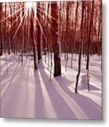 Winter Bling Metal Print