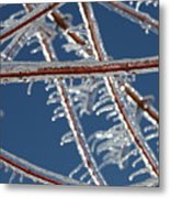 Winter Blue Metal Print