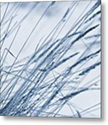 Winter Breeze Metal Print