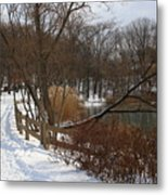 Winter By The Lake Metal Print