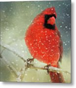 Winter Card Metal Print