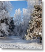Winter Charm Metal Print