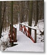 Winter Crossing Metal Print
