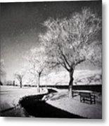 Winter Darkness Metal Print