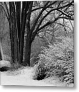 Winter Day - Black And White Metal Print