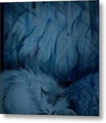 Winter Day Napping Metal Print
